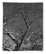 Niagara Falls Winter Textures Fleece Blanket