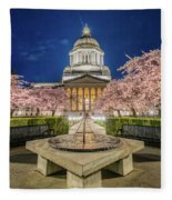 Night At The Capitol Fleece Blanket