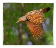Northern Flicker In Flight Fleece Blanket