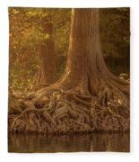 Old Cypress Tree Roots Fleece Blanket