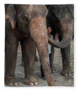 One Man, Two Elephants Fleece Blanket