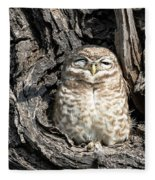 Owl In A Tree Fleece Blanket
