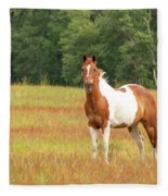 Paint Horse In Meadow Fleece Blanket