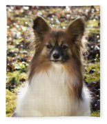 Papillon Sitting In Leaves Fleece Blanket