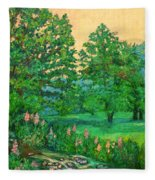 Park Road In Radford Fleece Blanket