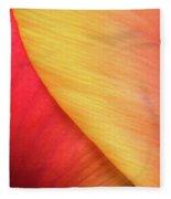 Pastel Curve  Fleece Blanket