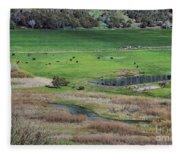 Peaceful Farm Fleece Blanket