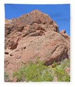 Phoenix Arizona Papago Park  Blue Sky Red Rocks Scrub Vegetation Yellow Flowers 3182019 5340 Fleece Blanket