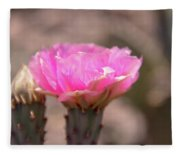 Pink Cactus Bloom Fleece Blanket