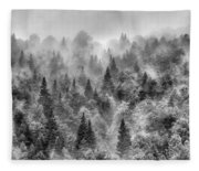 Pinsapos Into The Woods. Bw. Foggy Sunrise Fleece Blanket