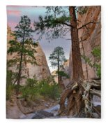 Ponderosa Pines In Slot Canyon Fleece Blanket