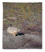 Prairie Dog 1 Fleece Blanket