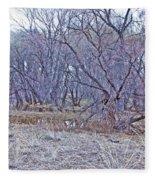 Prescott Arizona Watson Lake Bayou Trees Scrub Water Grasses 3142019 4916 Fleece Blanket