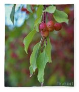 Pretty Cherries Hanging From Tree Fleece Blanket