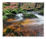 Rapids On Jedlova Brook, Jizera Mountains,  Czech Republic Fleece Blanket