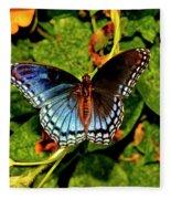 Red-spotted Purple Butterfly 017 Fleece Blanket