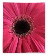 Rhapsody In Pink - Gerbera Daisy Fleece Blanket