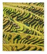 Rice Terraces In China Fleece Blanket
