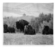 Rocky Mountain Bison Fleece Blanket