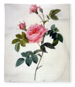 Rosa Inermis Fleece Blanket