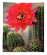Rose Quartz Cactus Flower  Fleece Blanket