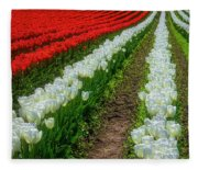 Rows Of White And Red Tulips Fleece Blanket