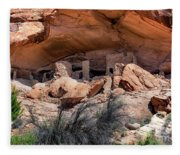 Ruins At Butler On The San Juan River  Fleece Blanket