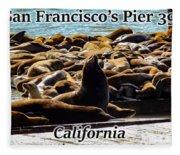 San Francisco's Pier 39 Walruses 1 Fleece Blanket