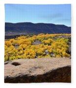 Sandstone Above Golden River Desert Landscape Fleece Blanket