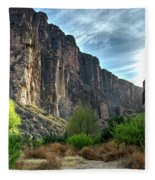 Santa Elena Canyon Fleece Blanket