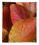 Sassafras Autumn Fleece Blanket