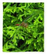 Scarlet Darter Male Dragonfly Fleece Blanket
