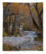 Serene Stream In Autumn Fleece Blanket