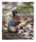 Shadow Boxing. Red Squirrel Fleece Blanket