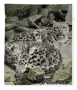 Siesta Sentinel Fleece Blanket