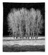 Silver Trees, Yosemite National Park Fleece Blanket