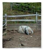Snoozing Hog Fleece Blanket