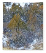 Snow-dusted In West Dakota Fleece Blanket