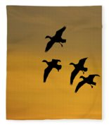 Snow Geese Landing At Sunset Fleece Blanket