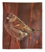 Sparrow In The Sunshine Fleece Blanket