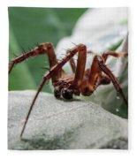 Spider Fleece Blanket