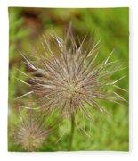 Spiky Plant Pulsatila Halleri Fleece Blanket