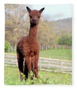 Spring Cria Fleece Blanket