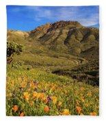 Springtime In The Desert Southwest Fleece Blanket