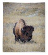 Standing Bull Fleece Blanket