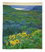 Steamboat Rock 01 Fleece Blanket