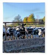 Steers Fleece Blanket