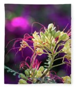 Stream Of Colored Highlights Leads To Yellow Bird Of Paradise Fleece Blanket