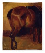 Study For Bay Horse Seen From Behind Fleece Blanket
