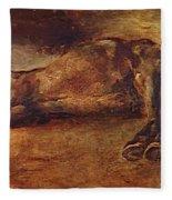 Study For Dead Horse Fleece Blanket